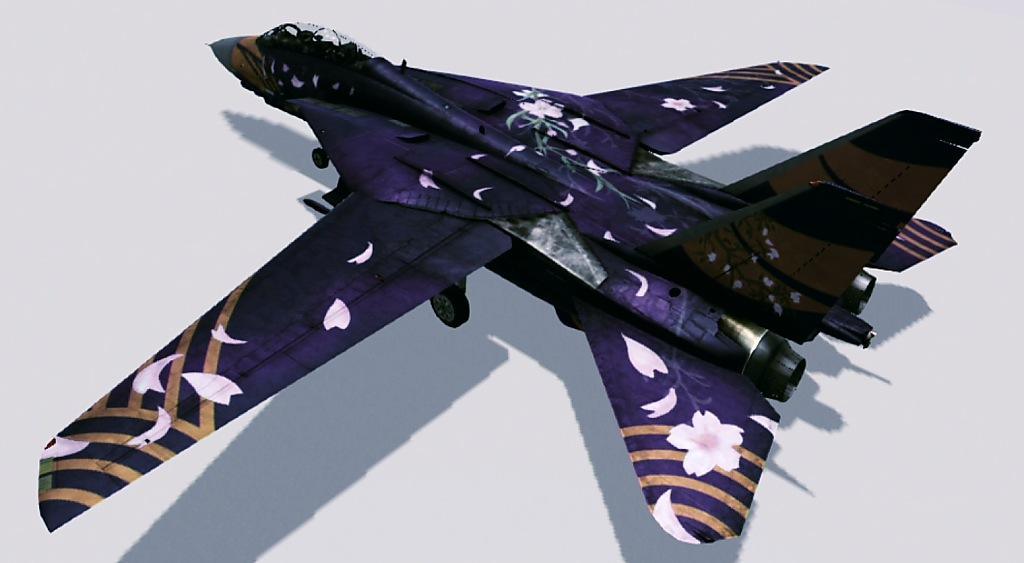 F-14A -ZP- 02.jpg