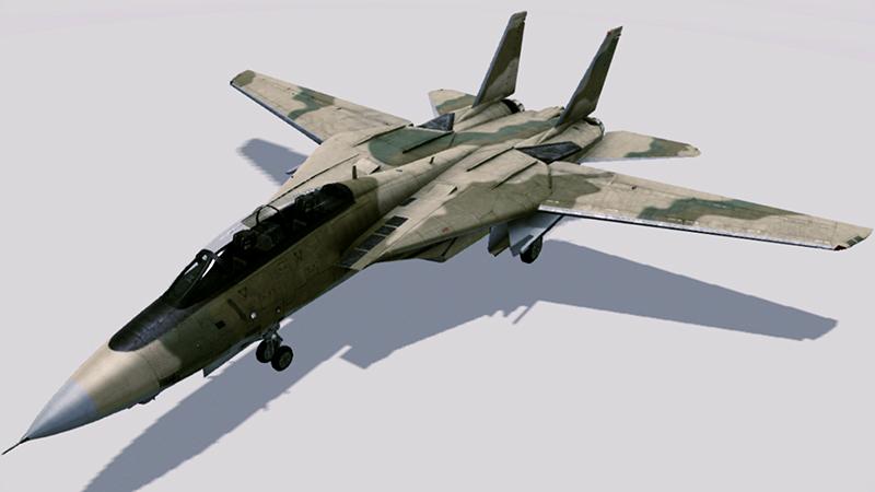 F-14B_-PC-_Wiki1.jpg