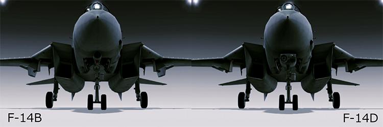 F-14B_F-14D_Wiki.jpg